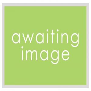 1st-biotech-awaiting-image